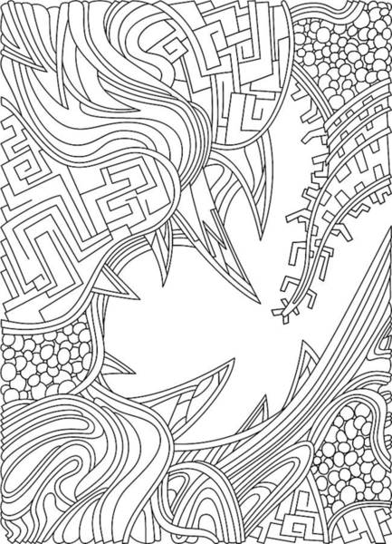 Drawing - Wandering 39 Black And White Line Art by Dream Ripple