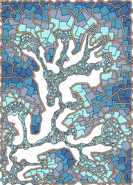 Drawing - Wandering 40 Color Variation 1 by Dream Ripple