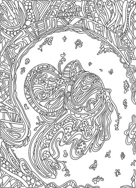 Drawing - Wandering 50 Black And White Line Art by Dream Ripple