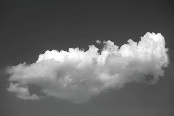Photograph - Wandering Cloud by Prakash Ghai