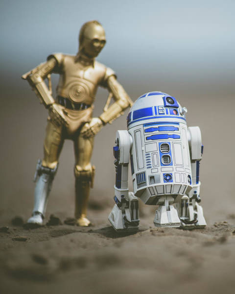 C3po Photograph - Wandering Droids by Jedi Journal