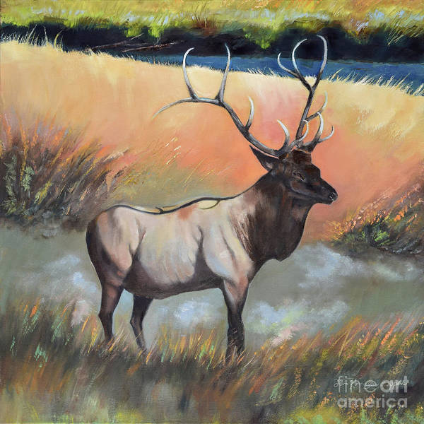 Painting - Wapiti - Enduring Elk by Jan Dappen