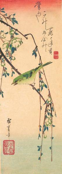 Wall Art - Painting - Warbler On A Plum Branch by Utagawa Hiroshige