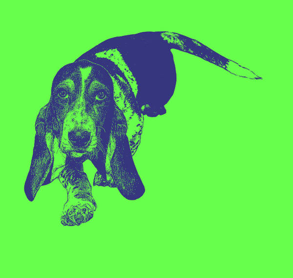 Something Different Photograph - Warhol Basset Green by Emily Kay