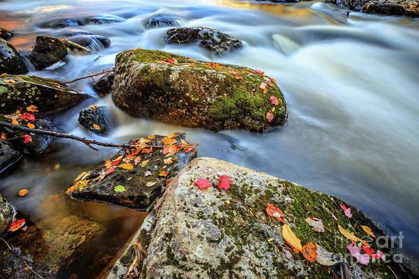 Wall Art - Photograph - Warner River Flow by Edward Fielding