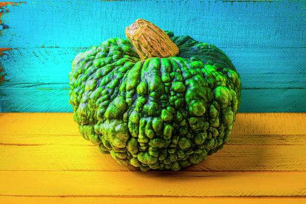 Wall Art - Photograph - Warty Green Pumpkin by Garry Gay