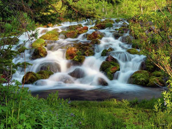 Photograph - Wasatch Range Cascade by Leland D Howard