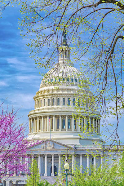 Wall Art - Photograph - Washington Dc Capitol Springtime by Betsy Knapp