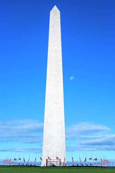 Photograph - Washington Monument by Harriet Feagin