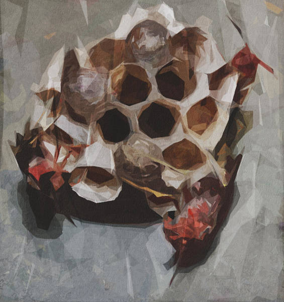Wall Art - Digital Art - Wasp Nest Insect Macro Hive by Draw Sly