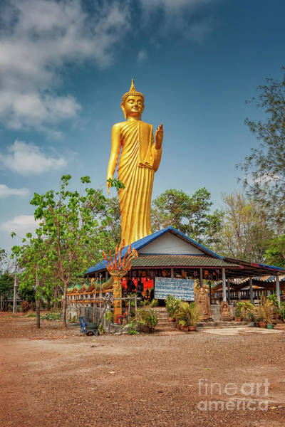 Photograph - Wat Kham Chanot Golden Buddha by Adrian Evans