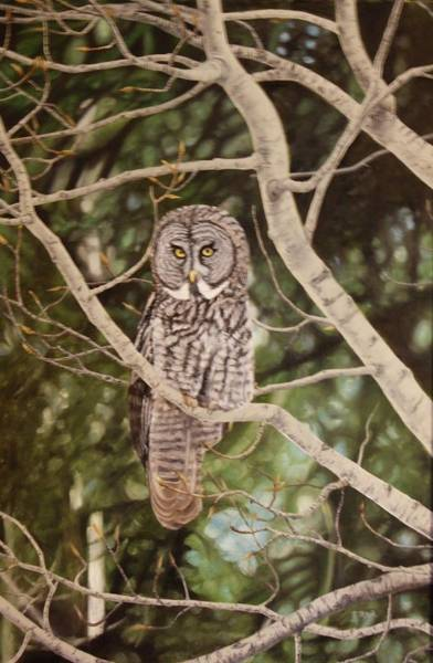 Painting - Watchful by Tammy Taylor