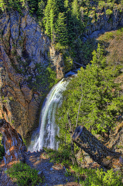 Camera Raw Photograph - Watching Clear Creek Fall  by Brenton Cooper