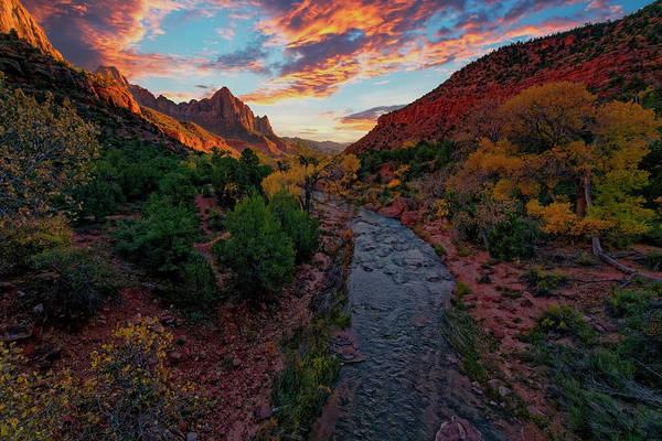 Photograph - Watchman Sunset by Jonathan Davison