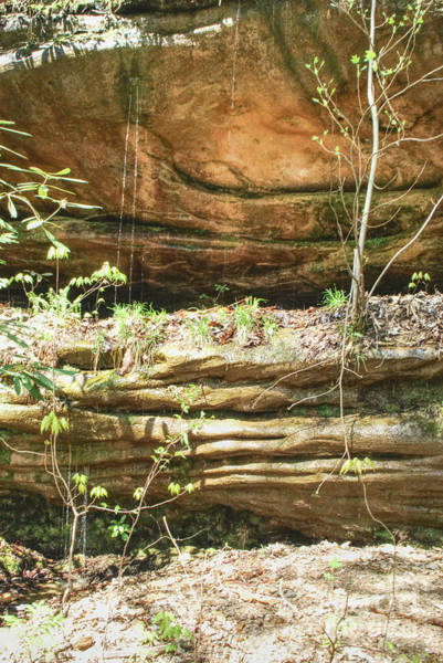 Photograph - Water Dripping Down Sandstone by Phil Perkins