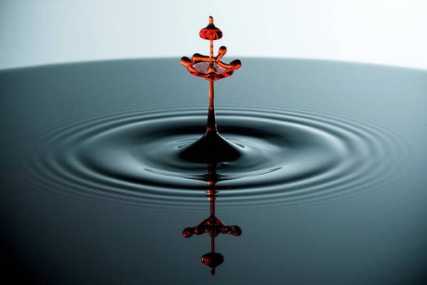 Photograph - Water Drop by Nicole Young