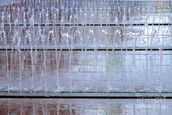 Photograph - Water In The City by Marina Usmanskaya