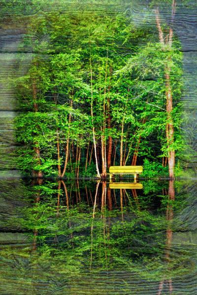 Wall Art - Photograph - Water-kissed by Debra and Dave Vanderlaan