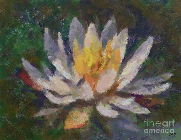 Wall Art - Painting - Water Lily by Dragica Micki Fortuna