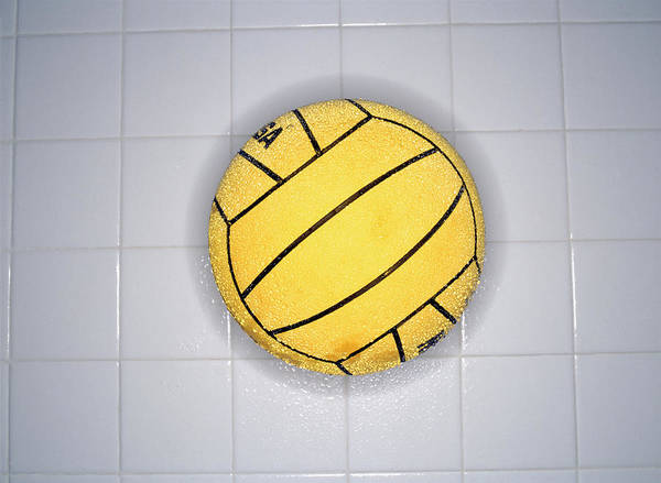 Ball Photograph - Water Polo Ball On Tile, Overhead View by Mike Powell