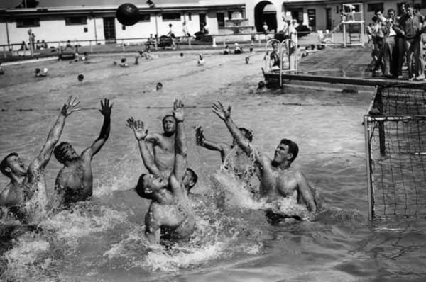 Polo Photograph - Water-polo by William Vanderson