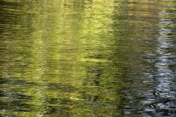 Water Reflection_521_17 Art Print
