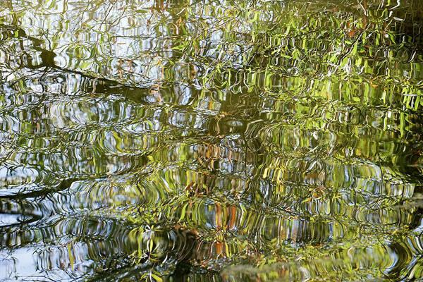Water Reflection_65_17 Art Print