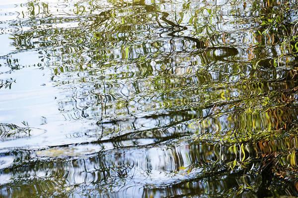 Water Reflection_74_17 Art Print