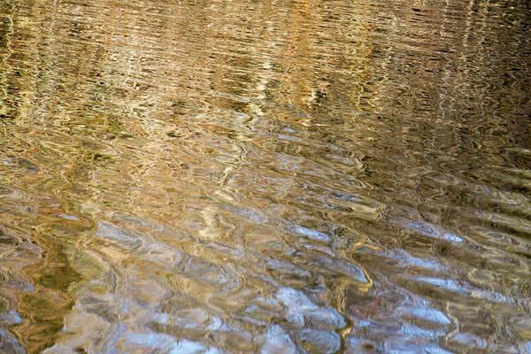 Water Reflection_751_18 Art Print