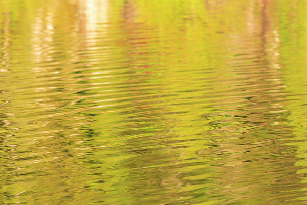 Wall Art - Photograph - Water Reflections, Browning Passage by Stuart Westmorland