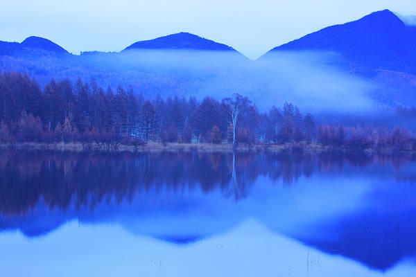 Nikko Photograph - Water Wetlands Forest Trees by Noriyuki Araki