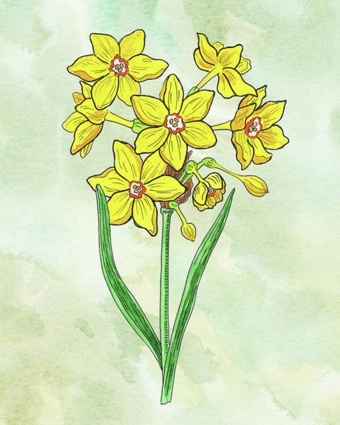 Wall Art - Painting - Watercolor Botanical Watercolor Miniature Daffodil  by Irina Sztukowski