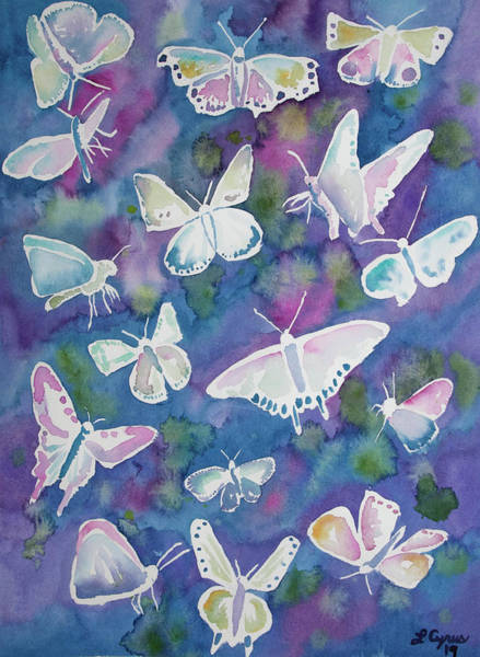 Painting - Watercolor - Butterfly Design by Cascade Colors