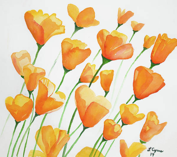 Painting - Watercolor  - California Poppies by Cascade Colors