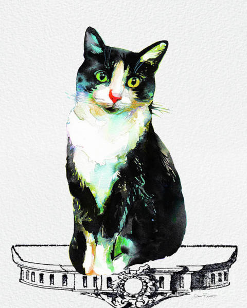 Wall Art - Painting - Watercolor Cat On Table E by Jean Plout