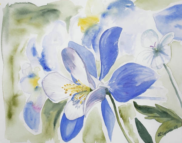 Painting - Watercolor - Colorado Blue Columbine by Cascade Colors