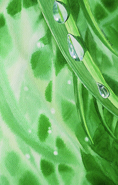 Wall Art - Painting - Watercolor Dew Drops by Irina Sztukowski