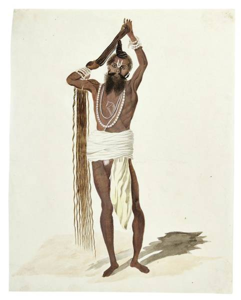 Wall Art - Painting - Watercolor Drawings By Rachel Welland, India, Company School, Late 18th Early 19th Century 3 by Celestial Images