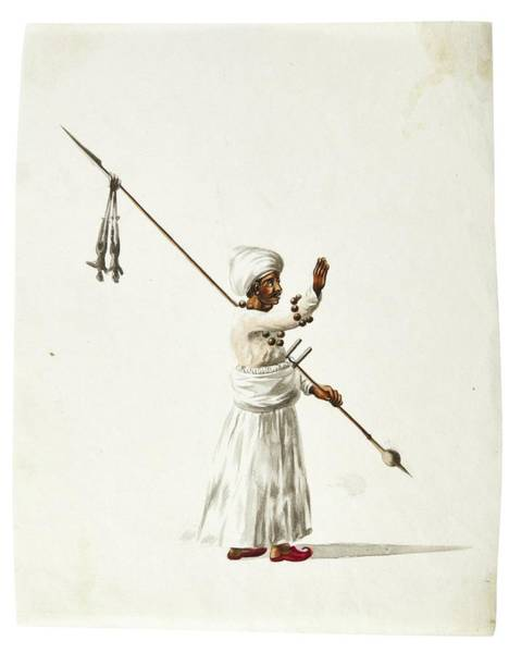 Wall Art - Painting - Watercolor Drawings By Rachel Welland, India, Company School, Late 18th Early 19th Century 6 by Celestial Images