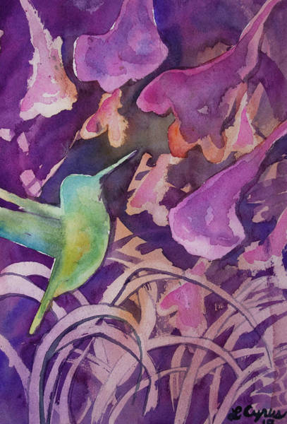 Painting - Watercolor - Hummingbird Design by Cascade Colors