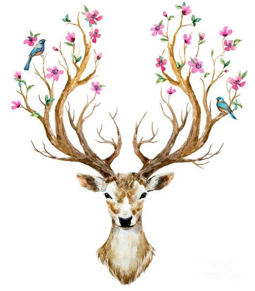 Wall Art - Digital Art - Watercolor Illustration Isolated Deer by Anastasia Lembrik