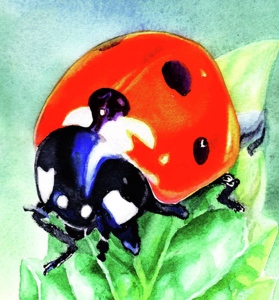 Wall Art - Painting - Watercolor Ladybug by Irina Sztukowski