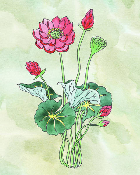 Painting - Watercolor Lotus Flower Botanical by Irina Sztukowski