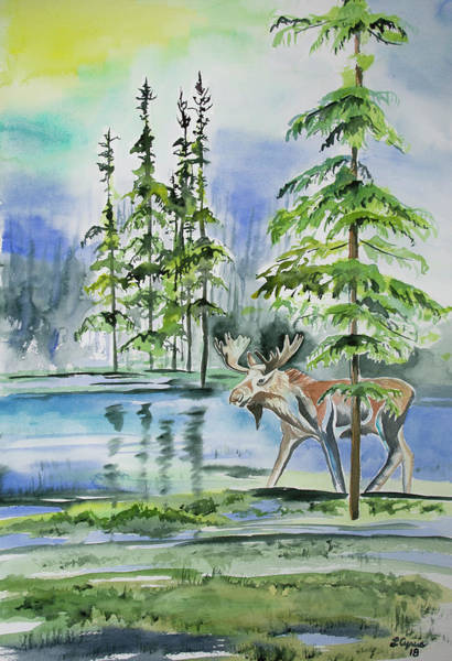 Painting - Watercolor - Moose In The Northern Woods by Lynn Cyrus