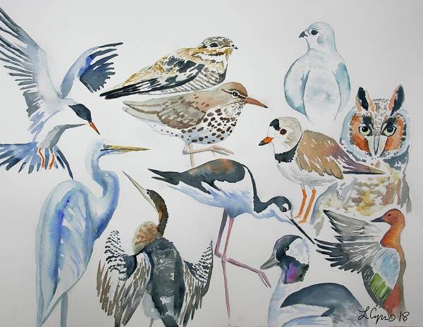 Painting - Watercolor - North American Birds Detail by Cascade Colors