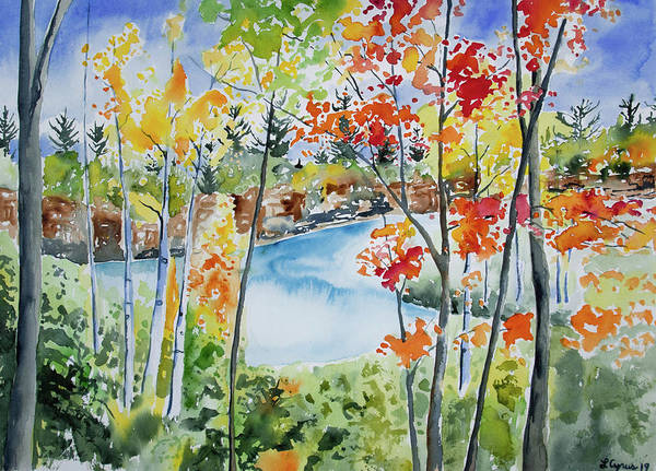 Painting - Watercolor - Northern Minnesota Autumn by Cascade Colors