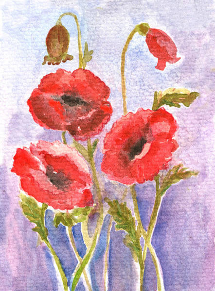 Poppies Digital Art - Watercolor Painted Poppy Flowers On by Mitza