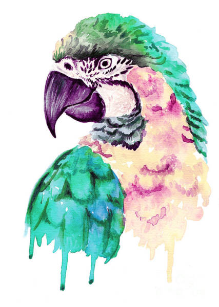 Vibrant Color Wall Art - Digital Art - Watercolor Parrot Portrait by Maria Sem