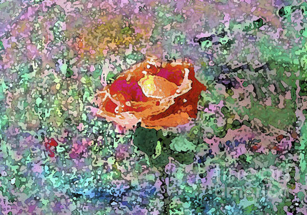 Mixed Media - Watercolor Rose 1011 by Corinne Carroll