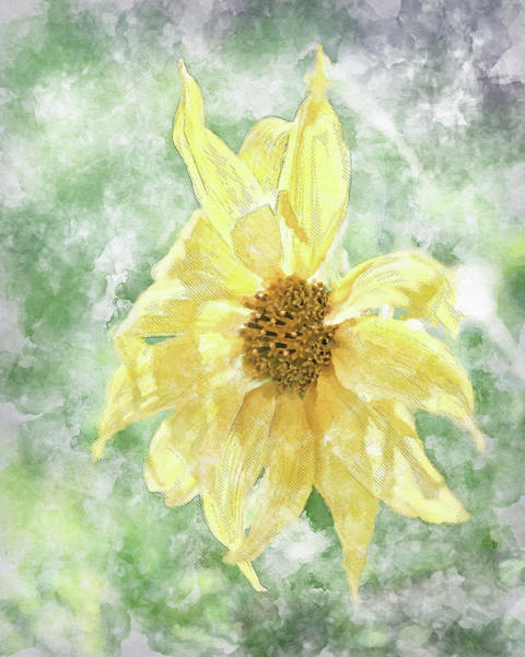 Photograph - Watercolor Sunshine II by Jennifer Grossnickle
